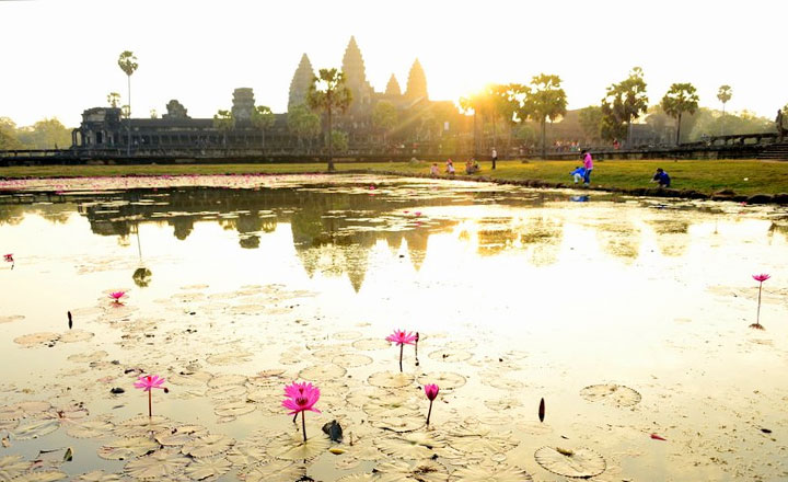 Angkor Discovery